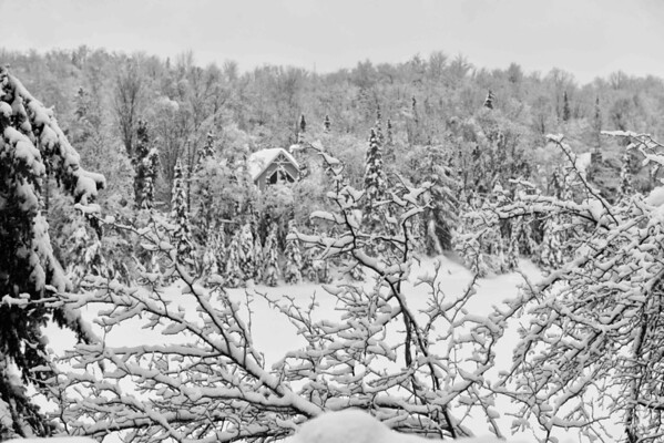 Winter in the Laurentian Mountains