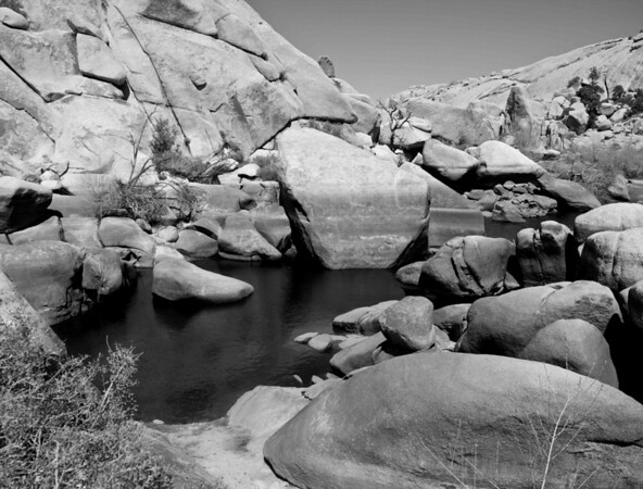 Small Lake in Joshua Tree