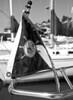 Sailboat Mast
