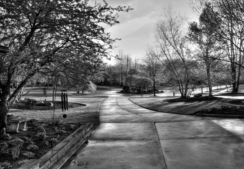 After a Spring Rain Shower