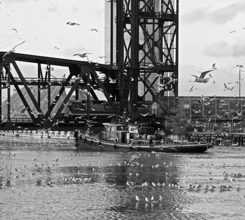Tugboat and Gulls on the Cuyahoga