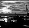 Everett Harbor Sunset