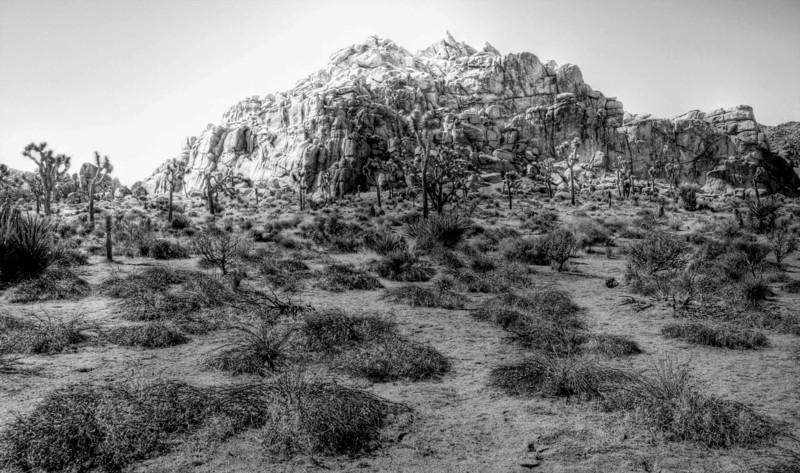 Small Peak in Joshua Tree National Park