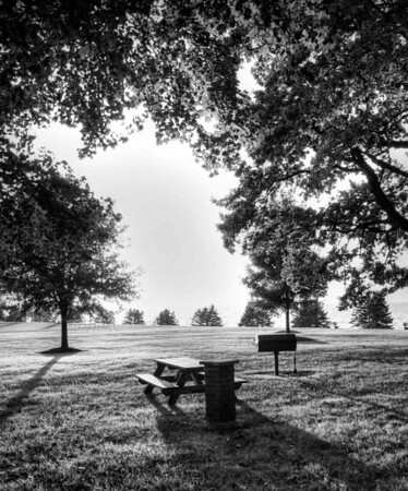 Lone Picnic Table