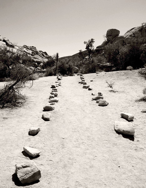 Stone Marked Path in Joshua Tree