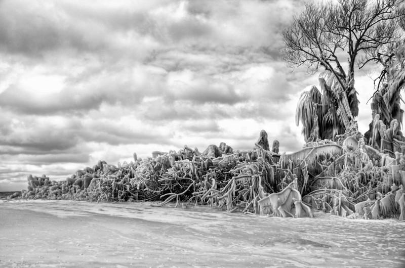 Frozen along Lake Erie Shore