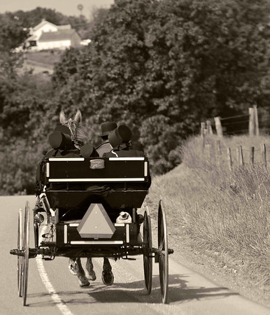 Amish Family in Buggy