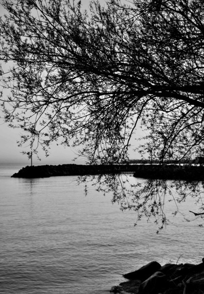 Sunrise at Shoreby Harbor