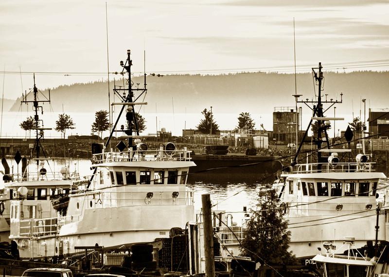 Everett Harbor Boats and Fog