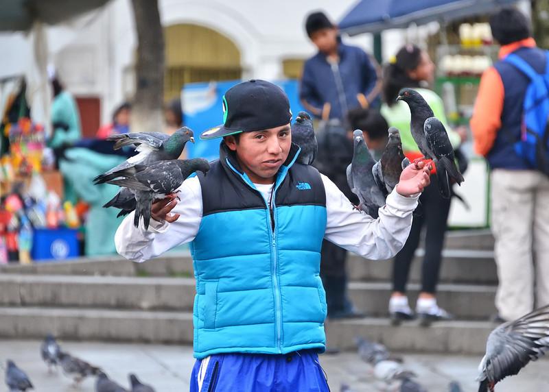 BOV_0207-7x5-Boy-Birds