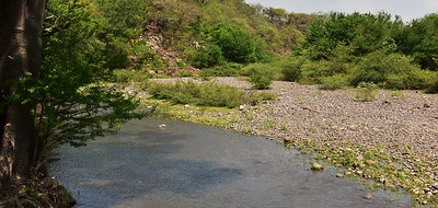NEA_0499-Looking Down river at site