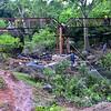 NEA_6430-Bridge-At Work
