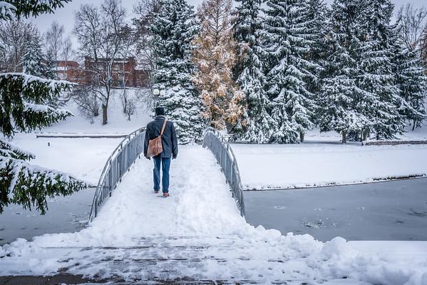 Frozen Panevezis