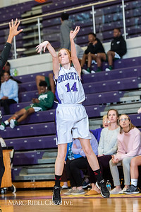 Broughton basketball vs Southeast Raleigh.  January 28, 2019. 750_8427