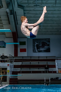 Broughton diving. November 28, 2018, MRC_3674