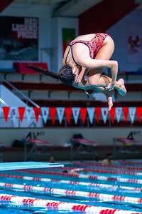 Broughton diving. November 28, 2018, MRC_3921