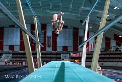 Broughton diving. November 28, 2018, MRC_3694