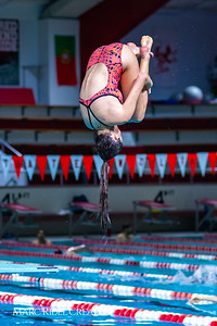 Broughton diving. November 28, 2018, MRC_3922