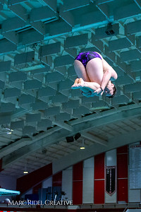 Broughton diving. November 28, 2018, MRC_3879