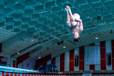 Broughton diving. November 28, 2018, MRC_3810