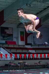 Broughton diving. November 28, 2018, MRC_4016