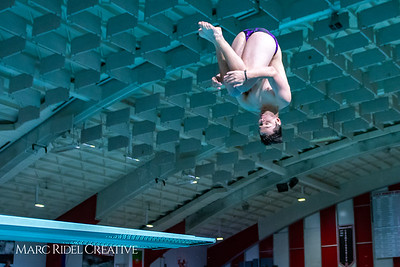 Broughton diving. November 28, 2018, MRC_3875