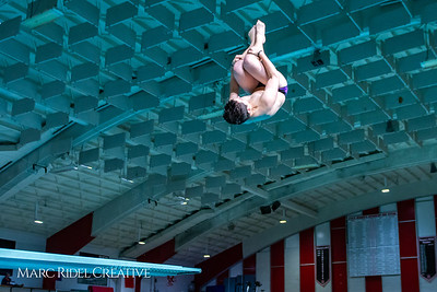 Broughton diving. November 28, 2018, MRC_3876