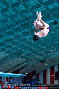 Broughton diving. November 28, 2018, MRC_3806