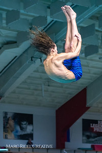 Broughton diving. November 28, 2018, MRC_4025