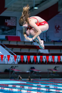 Broughton diving. November 28, 2018, MRC_3900