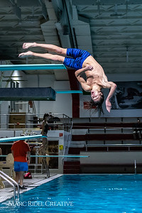 Broughton diving. November 28, 2018, MRC_3661