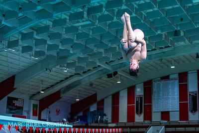 Broughton diving. November 28, 2018, MRC_3880