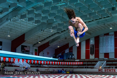Broughton diving. November 28, 2018, MRC_3868