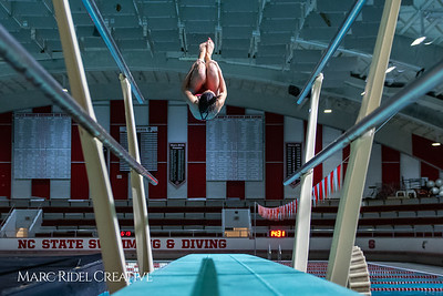 Broughton diving. November 28, 2018, MRC_3695