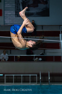 Broughton diving. January 14, 2019. 750_3093