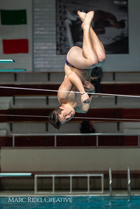 Broughton diving. January 14, 2019. 750_3058
