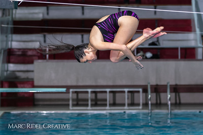 Broughton diving. January 14, 2019. 750_3088