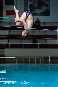 Broughton diving. January 14, 2019. 750_3070