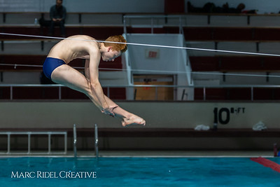 Broughton diving. January 14, 2019. 750_3062