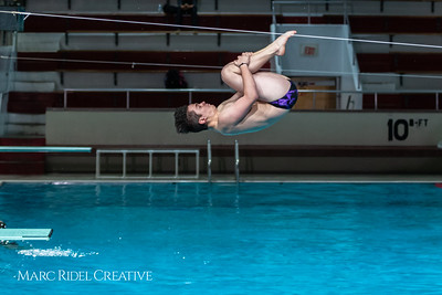 Broughton diving. January 14, 2019. 750_3073