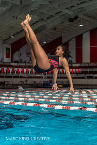 Broughton diving practice. January 7, 2019. 750_1480