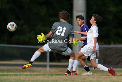 Broughton soccer vs Millbrook. October 7, 2019. D4S_5702