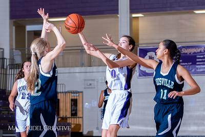 Broughton girls JV basketball vs Leesville. February 4, 2019. 750_2040