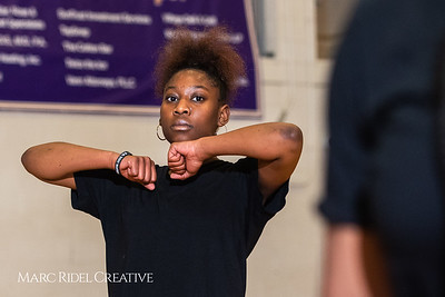 Broughton girls varsity basketball vs. Leesville. January 8, 2019. 750_1586