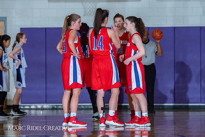 Broughton girls JV basketball vs Sanderson. February 11, 2019. 750_5241