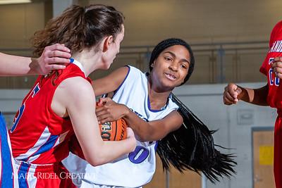 Broughton girls JV basketball vs Sanderson. February 11, 2019. 750_5318