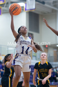Broughton Lady Caps varsity basketball vs Enloe. December 17, 2019. D4S_8685