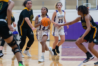Broughton Lady Caps varsity basketball vs Enloe. December 17, 2019. D4S_8708