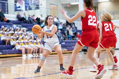 Broughton JV girls basketball vs Sanderson. January 9, 2020. MRC_0319