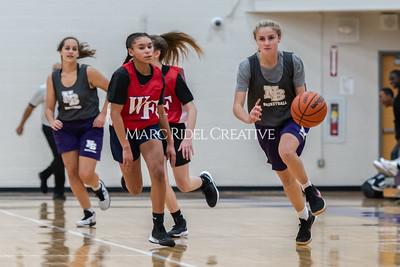 Broughton girls basketball vs Wake Forest. November 14, 2019. D4S_9516